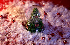 Fir. Christmas decoration with a fir and snow Royalty Free Stock Photography