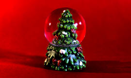 Fir. Christmas decoration with a fir and snow Royalty Free Stock Photo