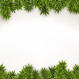 Fir christmas frame. Detailed frame with fir. Christmas background. Vector illustration Stock Photography