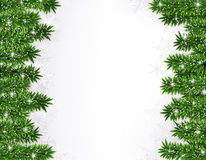 Fir christmas frame. Detailed frame with fir. Christmas background. Vector illustration Royalty Free Stock Photography