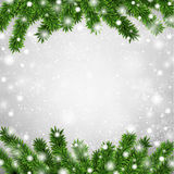 Fir christmas frame. Detailed frame with fir. Christmas background. Vector illustration Stock Photos