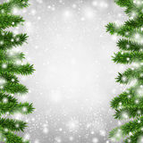 Fir christmas frame. Royalty Free Stock Photos