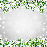 Fir christmas frame. Detailed frame with fir. Christmas background. Vector illustration Royalty Free Stock Photos