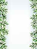 Fir christmas frame. Detailed frame with fir. Christmas background. Vector illustration Royalty Free Stock Image