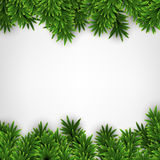 Fir christmas frame. Detailed frame with fir. Christmas background. Vector illustration Stock Image