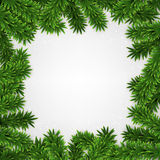 Fir christmas frame. Detailed frame with fir Christmas background Vector illustration Royalty Free Stock Images