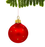 Fir and christmas red ball  on white Royalty Free Stock Image