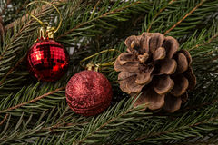 Fir cone and christmas decorations on the branch Royalty Free Stock Image