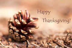 Fir Cone with Happy Thanksgiving Stock Photos