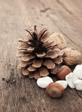 Fir cone next to various nuts Stock Photo
