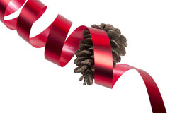 Fir-cone and  ribbon Stock Photo