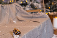 Fir-cone in a swing with a blanket in a snow-covered park Royalty Free Stock Photography