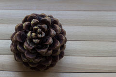 Fir-cone on the wooden surface. Nature, eco concept Stock Images