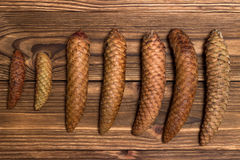 Fir cones of different shapes and sizes on the wooden background Royalty Free Stock Photos
