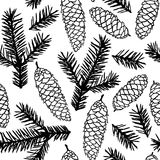 Fir cones and fir branches pattern seamless. Vector illustrations of fir cones and fir branches pattern seamless Stock Photography