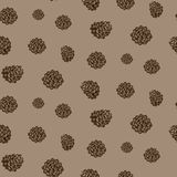 Fir cones seamless vector brown background pattern. Royalty Free Stock Images