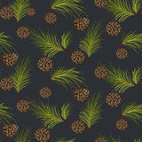 Fir cones seamless vector pattern. Royalty Free Stock Photo