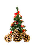 Fir cones and spruce Royalty Free Stock Photos