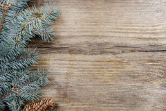 Fir with cones on wooden background Stock Image