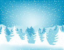 Fir forest. In wintertime with falling snow Royalty Free Stock Image