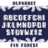 Fir Forest Alphabet. Decorative letters with fir branch element Stock Images