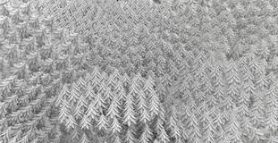 Fir Forest Background White. Fir tree forest 3d models background, white, horizontal Stock Photography