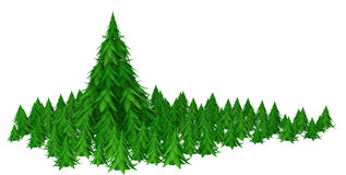 Fir Forest, Big Tree. Fir trees 3d models  with white background Royalty Free Stock Images