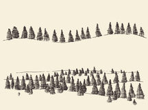 Fir Forest Contours Engraving in Mountains. Mountains with fir forest contours of the mountains engraving vector illustration hand drawn sketch Royalty Free Stock Photography