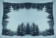 Fir forest cube. Magic winter landscape between coniferous trees in the forest among snow. Three dimensional landscape, holiday journey, travel parallel worlds Royalty Free Stock Photography