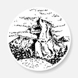 Fir forest with a glade against the background of the rock. Black and white sketch. Fir forest with a glade against the background of the rock Royalty Free Stock Photo