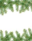 Fir frame. Fir branch frame ,holiday decoration Royalty Free Stock Image