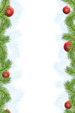 Fir framing. Background with decoration for your design on white background Royalty Free Stock Images