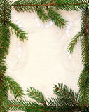 Fir framing. Bordering with spruce branches on embroidery cloth background Royalty Free Stock Images