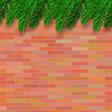 Fir Green Branch. On Orange Brick Background Stock Image