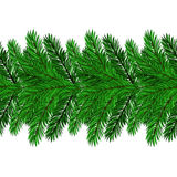 Fir Green Branches. On White Background Royalty Free Stock Photos