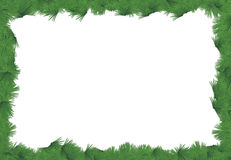 Fir leaves frame border Royalty Free Stock Photo