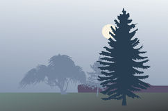 Fir in mist illustration Stock Photography