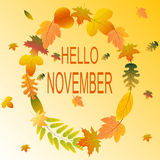 Fir November hello Autumn Background Stock Foto's