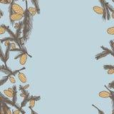 Fir pine cone seamless border. Vector illustration. Use as a greeting card Stock Photos
