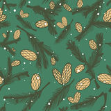 Fir pine cone seamless pattern. Vector illustration Stock Image