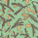Fir pine cone seamless pattern. Vector illustration Stock Photo