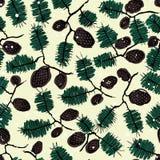 Fir pine pattern. christmass tree cones seamless vector illustration Stock Photos