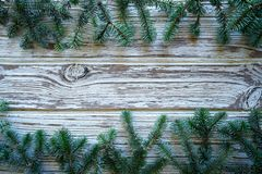 Fir real branch christmas on white wood stock photo