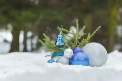Fir sapling tree on snowy ground with Christmas Royalty Free Stock Image