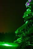 Fir-tree νύχτας Στοκ εικόνες με δικαίωμα ελεύθερης χρήσης