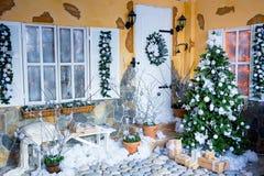 Fir-tree Χριστουγέννων στα άσπρα λουλούδια Στοκ Εικόνες