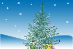 Fir-tree Stock Photos