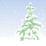 Fir-tree. Xmas vector background Royalty Free Stock Images