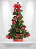 Fir tree. Holiday fir tree on the shelf Royalty Free Stock Photo