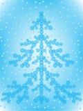 Fir-tree Royalty Free Stock Photo